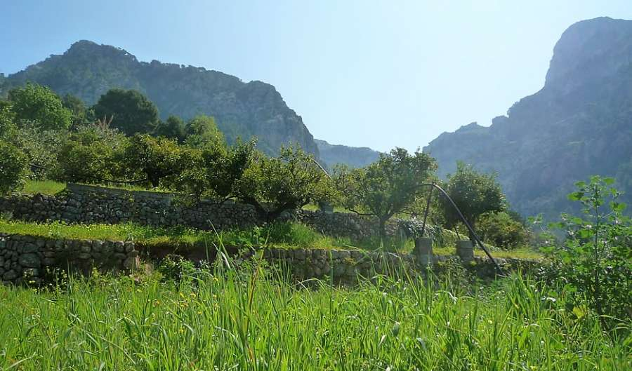biniaraitx_countryside_mallorca